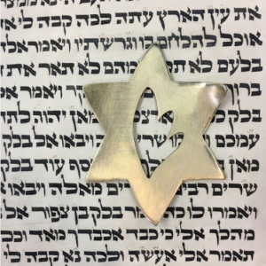 Shoah Aliyah Placeholder by Aimee Golant